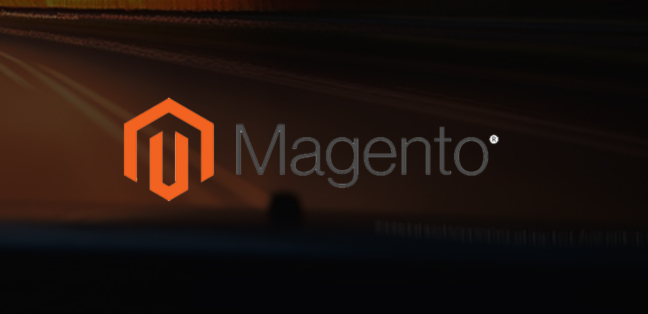 Magento Payment Gateway Integration Services