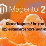 Choose Magento 2 for your B2B e-Commerce Store Solutions