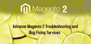 Advance Magento 2 Troubleshooting and Bug Fixing Services