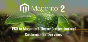 PSD to Magento 2 Theme Conversion and Customization Services