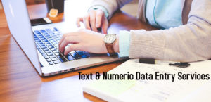 Text & Numeric Data Entry Services
