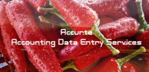 Accounting Data Entry Services