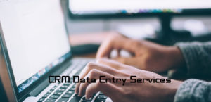 CRM Data Entry Services