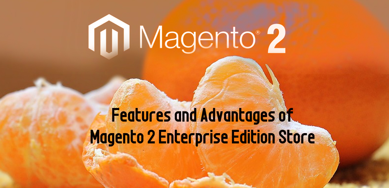 Features and Advantages of Magento 2 Enterprise Edition Store