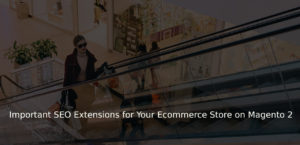 Important SEO Extensions for Your Ecommerce Store on Magento 2